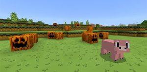 Minecraft Super Mario World Edition Texture Pack