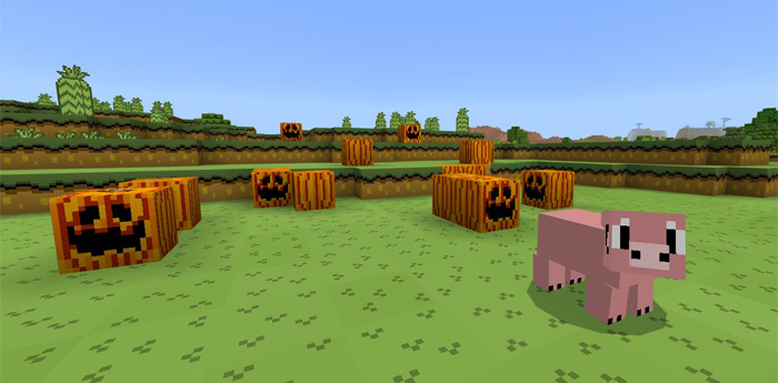 Minecraft Super Mario World Edition Texture Pack