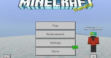 Chirstmas Pack – Minecraft 1.9