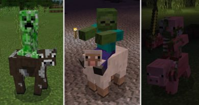 More Jockeys Addon – Minecraft 1.6