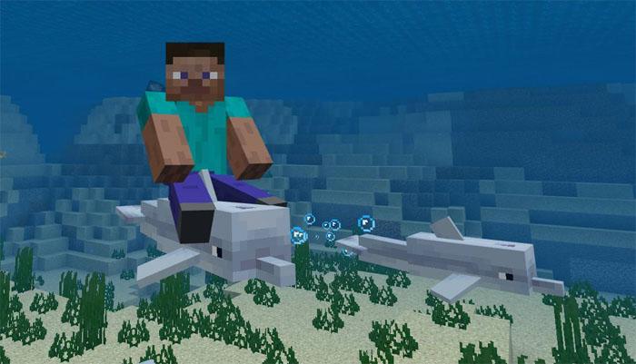 Dolphin Riding Addon