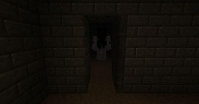Slendrina: The Cellar Seviye #1 Korku Haritası