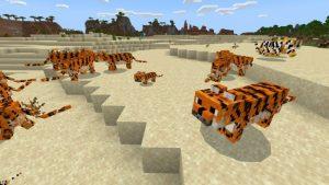 tiger mod